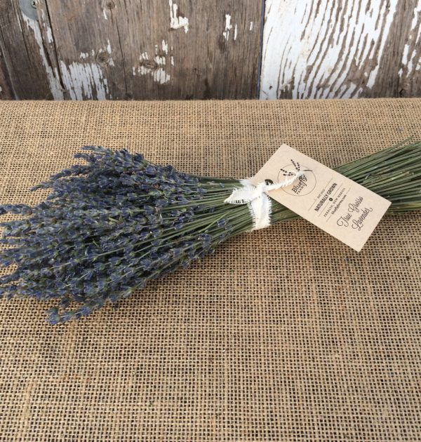 Dried lavender bundle on table.