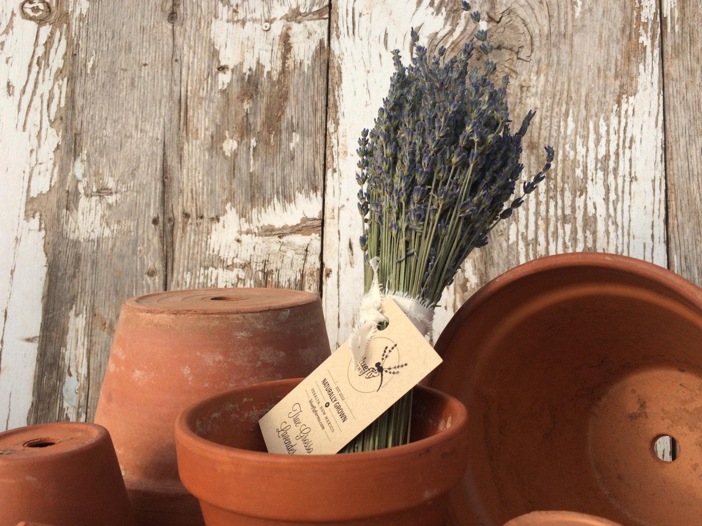 Dried lavender bundle in a pot.